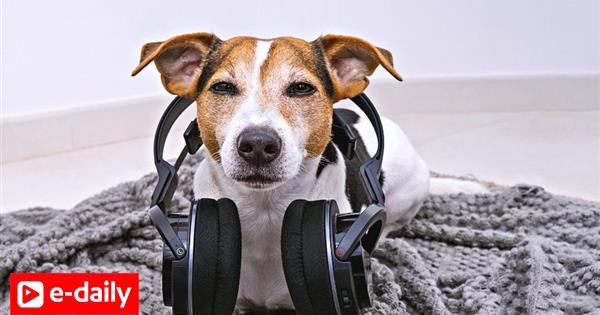 10 τραγούδια για να κάνουν λίγο καλύτερη την ημέρα σου (video)