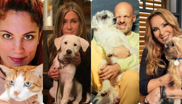 Παγκόσμια Ημέρα Αδέσποτων Ζώων: Celebrities που έχουν υιοθετήσει αδέσποτα
